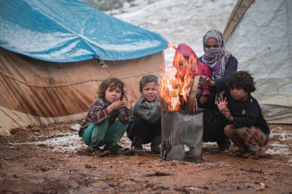 Aleppo Feedback 2