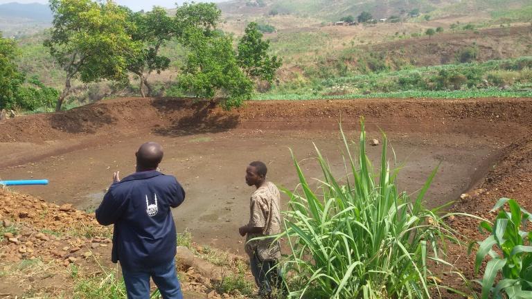 Malawi Case Study 2